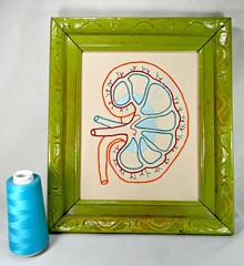腎臓の刺繍